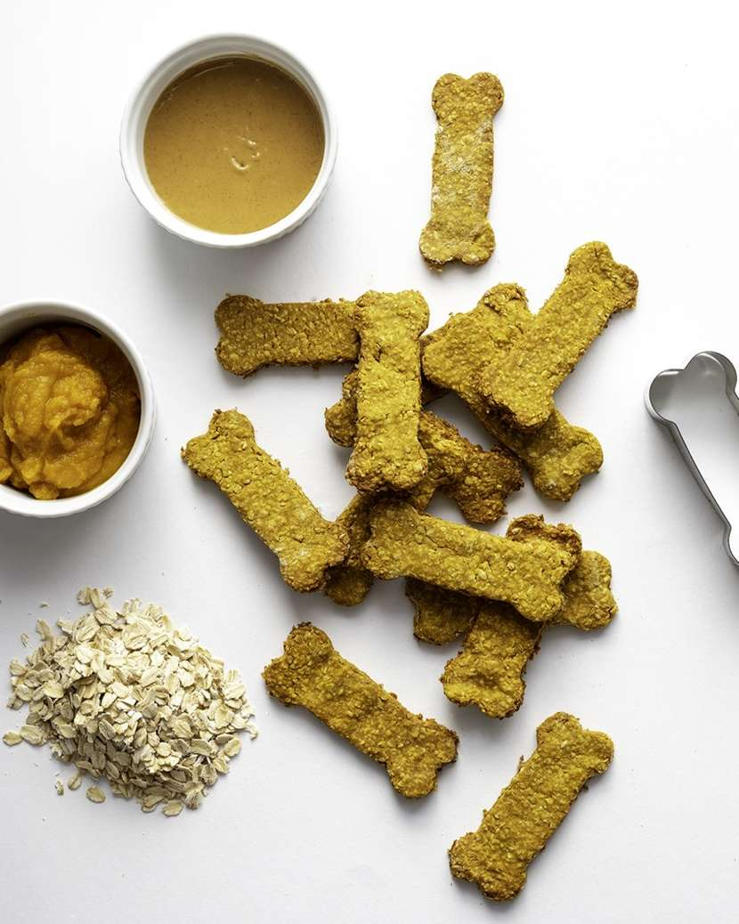 Homemade Dog Treats | Weelicious