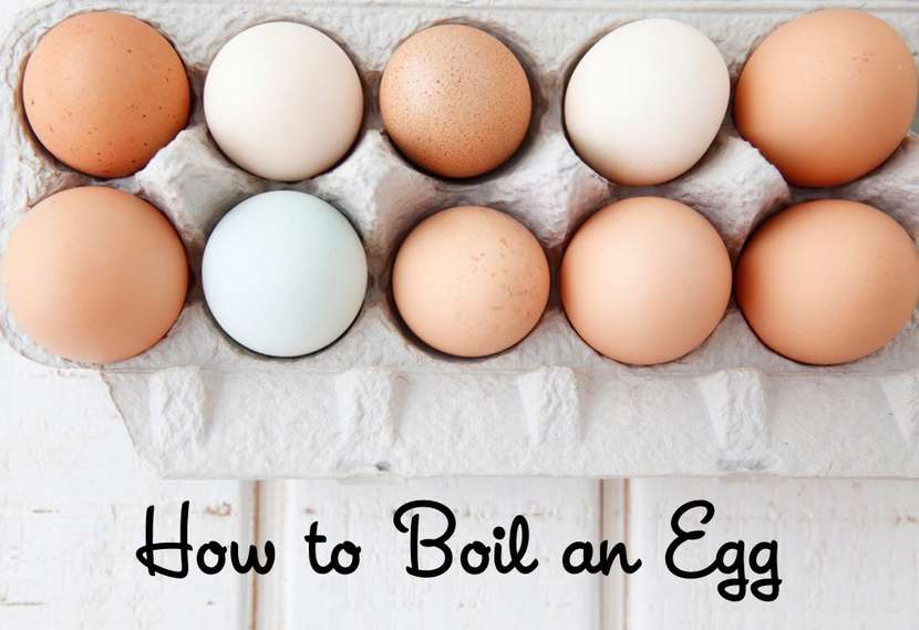 How to Boil an Egg Video from Weelicious