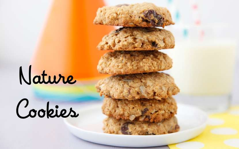Nature Cookies from Weelicious Lunches