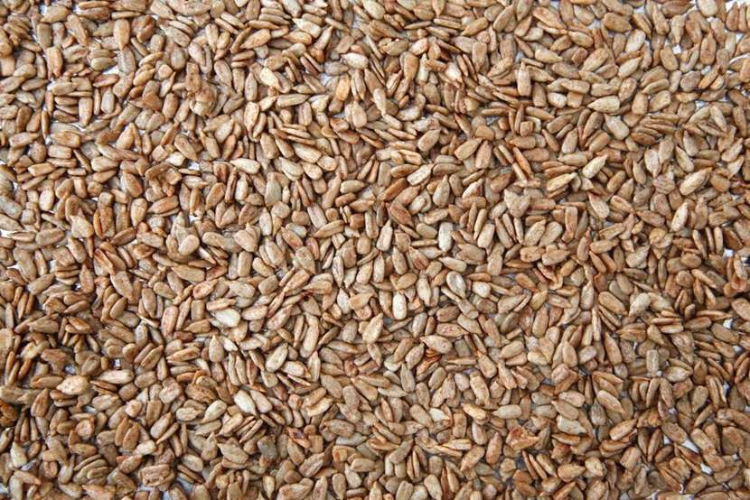 Maple Roast Sunflower Seeds from Weelicious