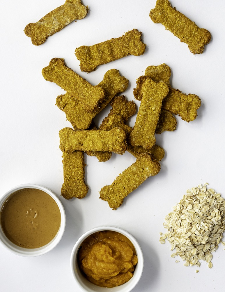 Homemade Dog Treats from Weelicious.com