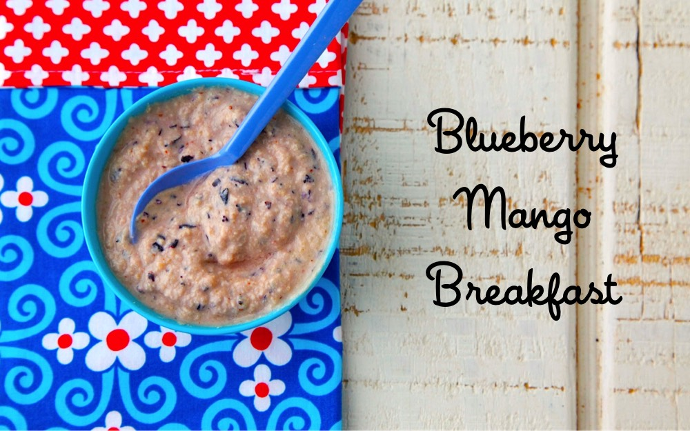 Blueberry Mango Breakfast Baby Food from Weelicious